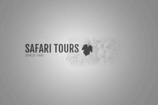 defaut-safari-2